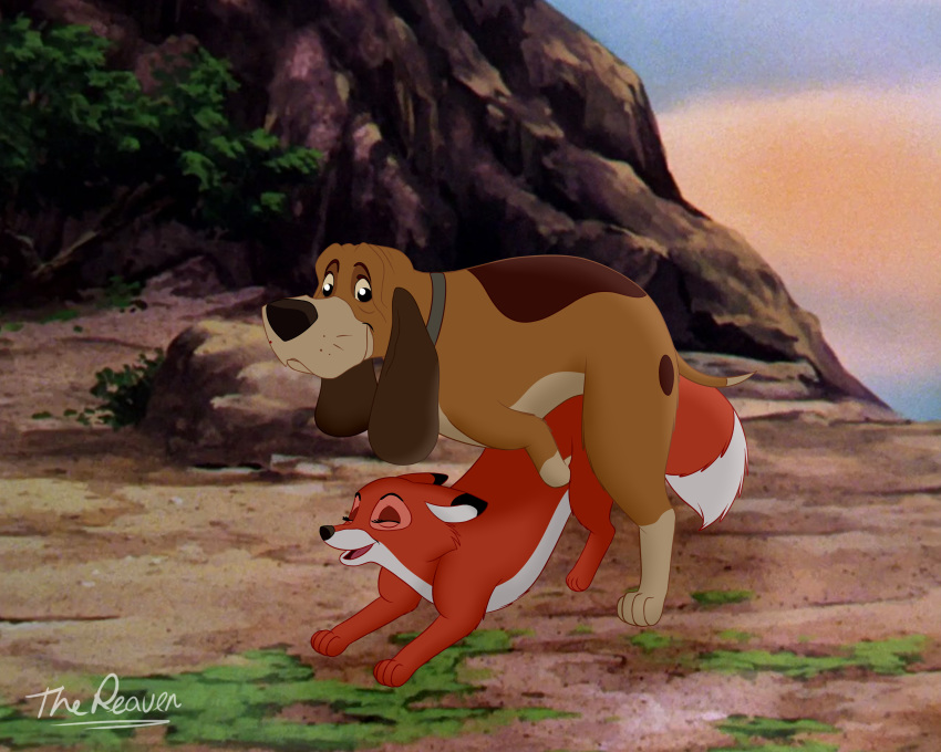 the the hound and fox mama big Naked king of the hill